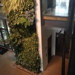 Lula Commercial Elevator